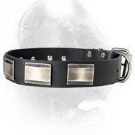 China New Designer Dog Collar with Large Nickel Plates for Cane Corso on sale