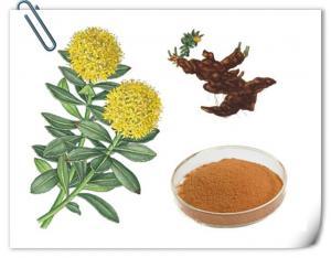 China Botanic Extract Rhodiola Rosea Extract on sale