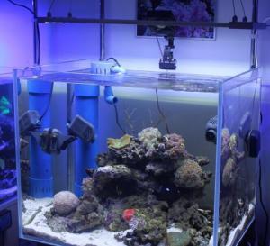 China 120W LED Aquarium Lighting LED DISPLAY SCREEN on sale