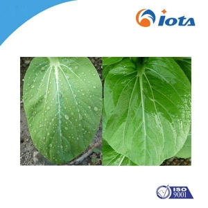 China Powder Agricultural Silicone synergist IOTA2001 Polyether silicone oils on sale