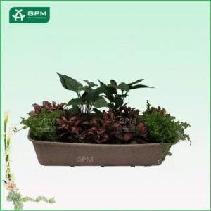 China Rectangular garden flower plant pot for sale on sale