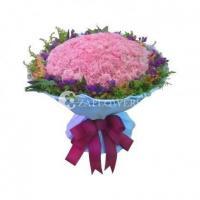 Carnation CNC013059