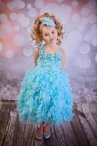 China Cinderella Dreams Royal Feathers & Roses Little Girls Tutu Dress on sale