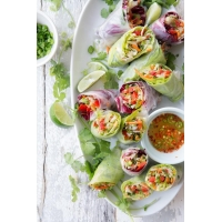 Chinese Salad Spring Rolls