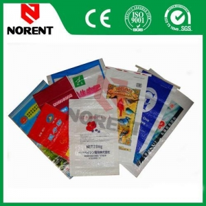 China 50kg Plastic Wholesale Customized Packaging Bags on sale
