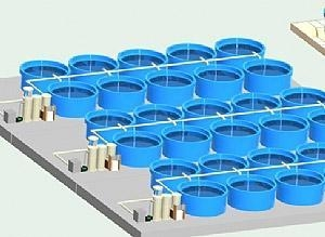 China DECOFACC-RS Breeding cycle of water treatment system on sale