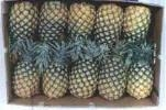 China Last lead Pineapple fresh air on sale