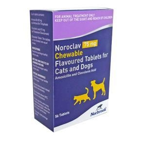 China Noroclav 75 mg Chewable Tablets for Cats and Dogs on sale