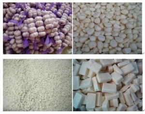 China Garlic on sale