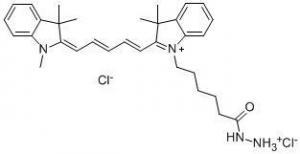 China Cyanine5 hydrazide on sale