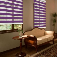 Electric Zebra blinds