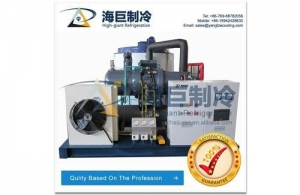 China Ice flakes making machine on sale