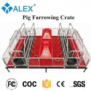 China Pig Farrowing Crate Pig Farrowing Bed/sow obstetric table on sale