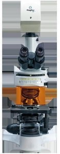 China Biological Microscope on sale