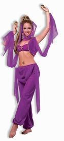 China Genie Belly Dancer Bra, Pants and Veil set on sale