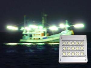 China green led fishing light LED Fishing Lights on sale