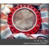 China API 6A Blind flange for oilfield wellhead for sale