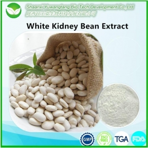 China White Kidney Bean Extract on sale