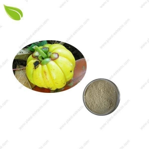 China Garcinia Cambogia Extrac >losing weight extract on sale