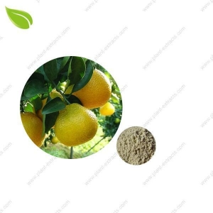 China Shaddock Peels Extract on sale
