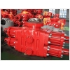 China Blowout Preventer for sale