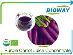 China Organic Purple Carrot Juice Concentrate on sale