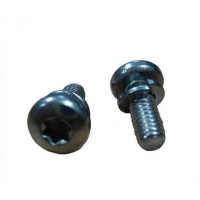 Torx Socket Screw of Fastener with Carbon Steel