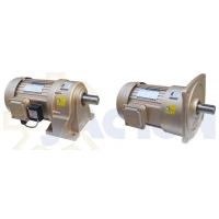 China 3 Phase Gear Motor on sale