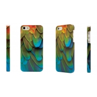 China Exotic Parrot for iPhone 5/5s Case on sale