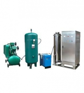 China 300g/h air ozone generator on sale