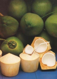 China Coconut Water Concentrate on sale
