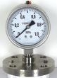 China YMN series diaphragm type vibrationresistant pressure gauge on sale