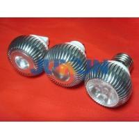Spots Light JKCP-034-01