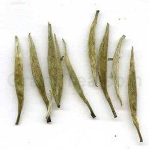 China White Down Silver Needle on sale