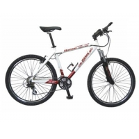 China Complete Bicycles EIB - 02 on sale