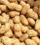 new environment-friendly peanut sheller