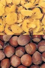 China Hazelnuts on sale