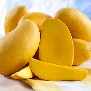 China Mango, Mango Pulp on sale