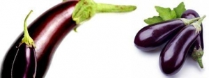China Egg Plant on sale