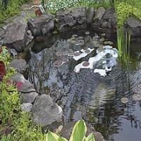 Algreen Ultimate Plus 1400 Gallon Liner Pond Kit