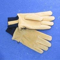 China PIG SKIN WINTER GLOVES on sale