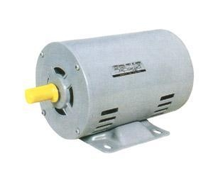 China ZJ series single-phase synchronous motor on sale
