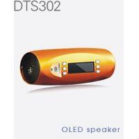 Speaker DTS302 sport speaker with OLED