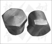 China Steel Pipe Fitting Threaded Plug on sale