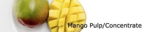 China Mango Pulp/Concentrate on sale