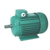 YS Fractional horsepower induction motors