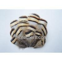 China Pheasant feather Craft - JF-F 006 on sale