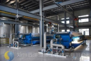 China Palm Oil Processing on sale