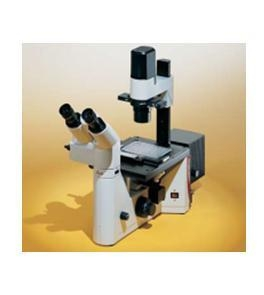 China Inverted Microscopes Inverted Microscopes on sale