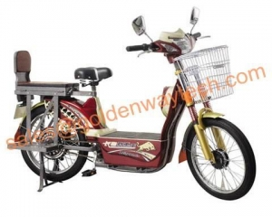 China lead acid electric bicycle on sale